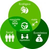 Sustentabilidad en la empresa
